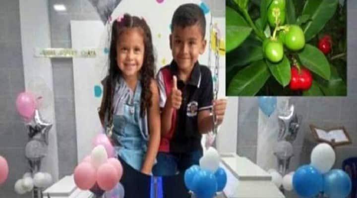 Murieron dos niños venezolanos tras comer extraño fruto en Colombia